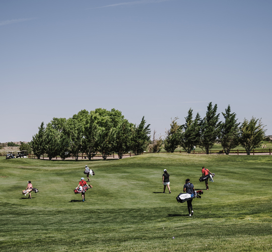 golfers in the course